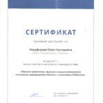 Сертификат Рефсервис Остров (на стр 2 и сервис)